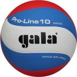 Мяч волейбольный Gala Pro-Line (BV5121S)