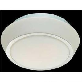 Потолочный светильник ST-Luce SL496.502.03