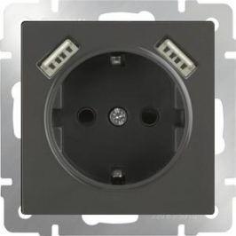 Розетка с заземлением, шторками и USBx2 Werkel серо-коричневая WL07-SKGS-USBx2-IP20