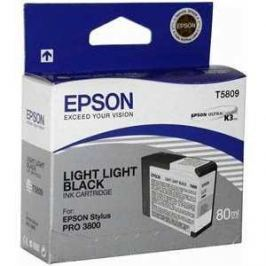 Картридж Epson Stylus Pro 3800 (C13T580100)