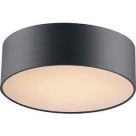 Потолочный светильник Favourite 1514-2C