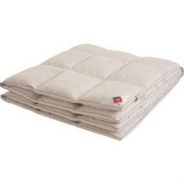 Двуспальное одеяло Arloni Афродита кассетное 172х205 теплое (172(16)02-ЛЭ)