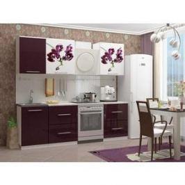 Кухня Миф Орхидея 1, 1.7м с фотопечатью
