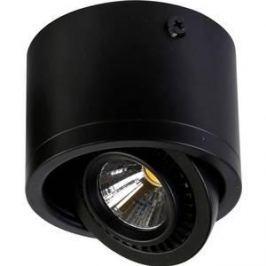 Потолочный светильник Favourite 1778-1C
