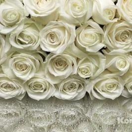 Фотообои Komar A la Rose (3,68х2,54 м) (8-314)