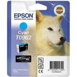 Картридж Epson R2880 (C13T09624010)