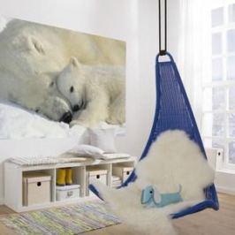 Фотообои Komar Polar Bears NG 184 х 127см. (1-605)