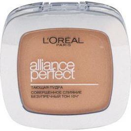 L'OREAL PERFECTION Alliance Perfect Пудра для лица тон D5