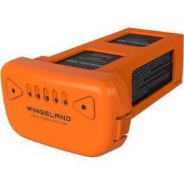 Аккумулятор Wingsland Li-Po 11.1В 5200мАч (3S) Minivet