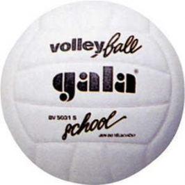 Мяч волейбольный Gala School Foam (BV5031S)