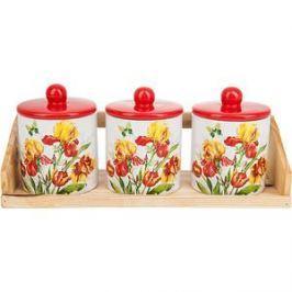 Набор банок для сыпучих продуктов 3 штуки Polystar Collection Касатик (L2520668)