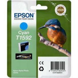 Картридж Epson Stylus Photo R2000 (C13T15924010)