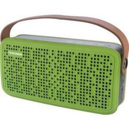 Портативная колонка TELEFUNKEN TF-PS1230B зеленый/коричневый