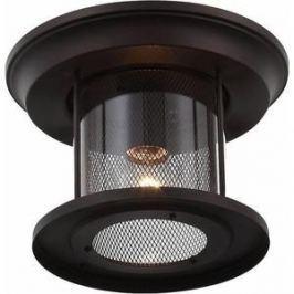 Уличный потолочный светильник ST-Luce SL080.402.01