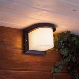 Уличный настенный cветильник Elektrostandard 4690389106248