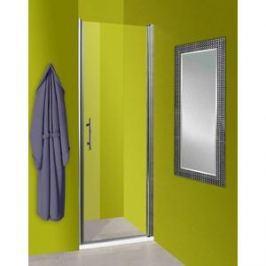 Душевая дверь Olive'S Zargoza D 90 реверсивная, профиль Silver глянцевый, стекло прозрачное 5 мм (ZARD-900-01C)