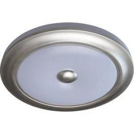 Потолочный светодиодный светильник с пультом MW-LIGHT 688010401