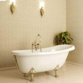 Ванна из литого мрамора Фэма Стиль Салерно 170х83 см лапы бронза