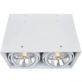 Потолочный светильник Artelamp A5936PL-2WH