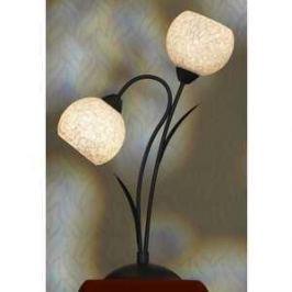 Настольная лампа Lussole LSF-6294-02