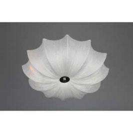 Потолочный светильник Omnilux OML-41907-06
