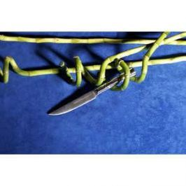 Нож кухонный Samura Bamboo 11 см SBA-0031