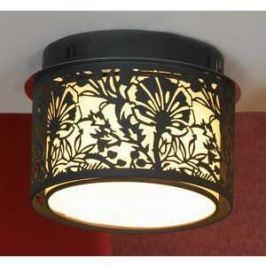 Потолочный светильник Lussole LSF-2377-04