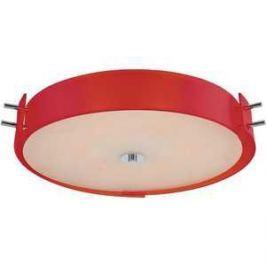 Потолочный светильник ST-Luce SL484.602.06