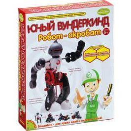 Опыты Bondibon французские Науки с Буки Юный вундеркинд Робот - акробат (GK013)