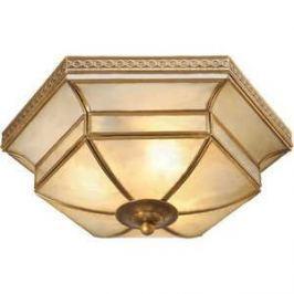 Потолочный светильник Chiaro 397010103