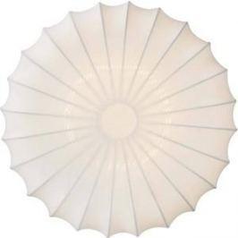 Потолочный светильник Donolux C111011/2R