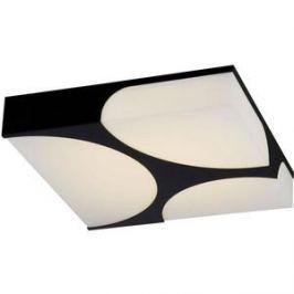 Потолочный светильник ST-Luce SL863.402.01