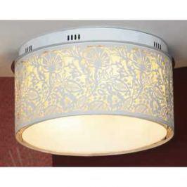 Потолочный светильник Lussole LSF-2307-07