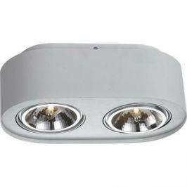 Потолочный светильник Artelamp A5643PL-2WH