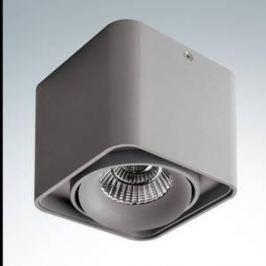 Потолочный светодиодный светильник Lightstar 052119