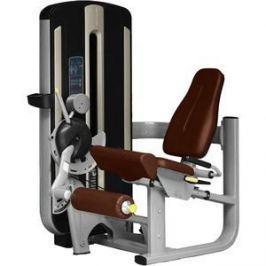 Разгибание ног сидя Bronze Gym MNM-014