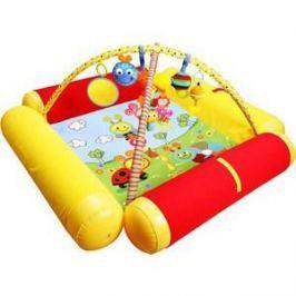 Развивающий коврик Biba Toys Друзья Бюсси с надувными бортиками120*120 см GD158