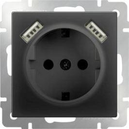 Розетка с заземлением, шторками и USBx2 Werkel черный матовый WL08-SKGS-USBx2-IP20