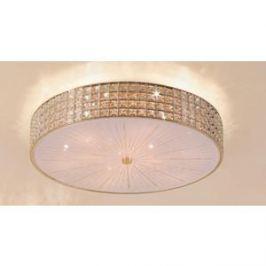 Потолочный светильник Citilux CL324102