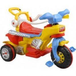 Велосипед 3-х колесный Pilsan