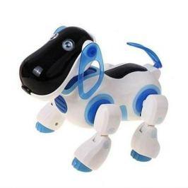 Радиоуправляемая собака Киберпес Ки-Ки Синий - 2089, CS toys