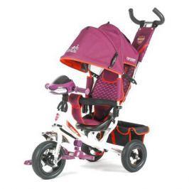 Детский велосипед TT Trike 950D-ATMH фиолетовый, TechTeam