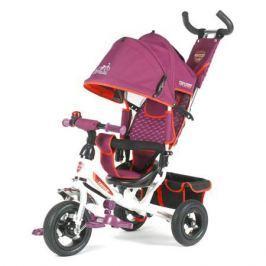 Трехколесный велосипед TechTeam 950D (фиолетовый), TechTeam