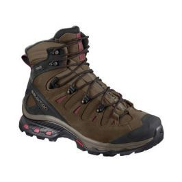 Ботинки Salomon Salomon Quest 4D 3 GTX женские