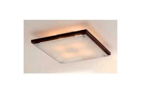 Потолочный светильник Citilux CL938541 Потолочные светильники